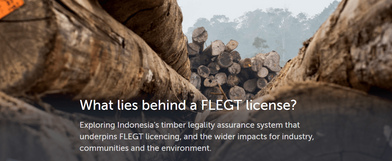 What Lies behind a FLEGT license cover