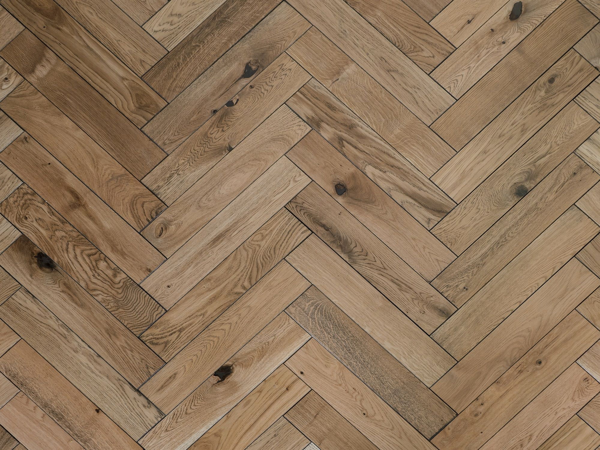Colour On The Floor Timber Trade Federation