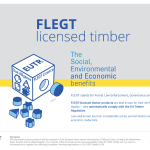 New resource for timber buyers on benefits of FLEGT-licensed products