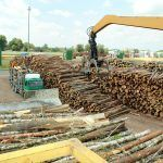 Belarus Timber Trade - State of the Industry in 2018