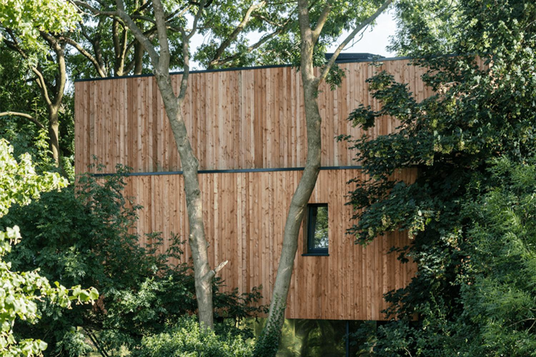 Dursley Tree House Nicks Timber