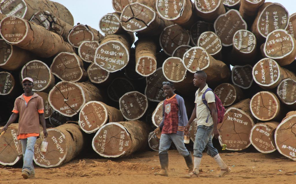 World leading tropical timber businesses to come together to talk trade