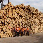 Western Timber Trade Association - Teaches the Teacher
