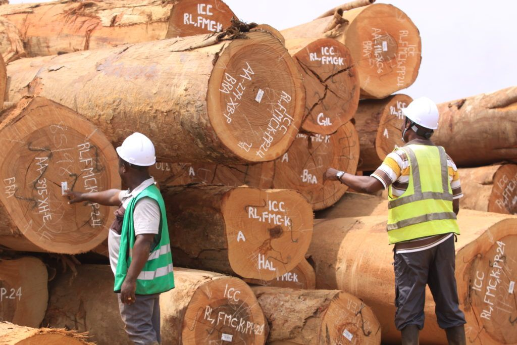 TTF Tropical Timber Market Webinar forecasts the sector will bounce back in 2021