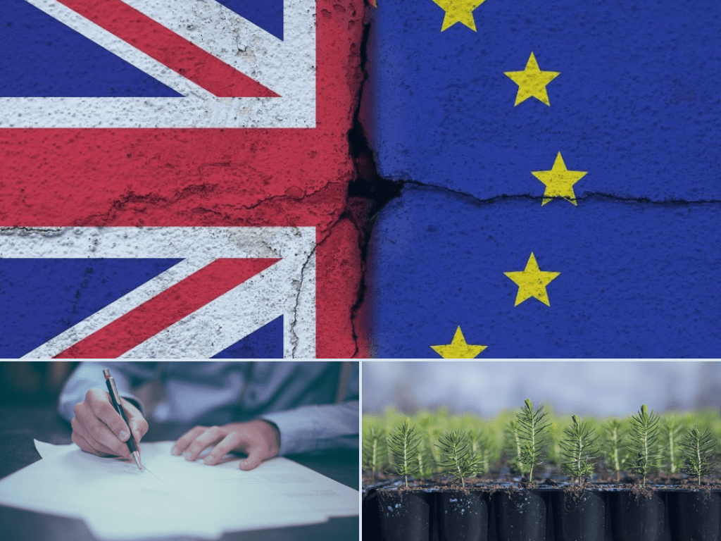 Brexit, plant health and CE marking
