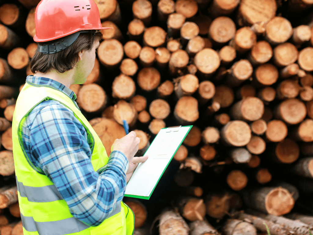 What does a drop in US lumber futures mean for the UK?